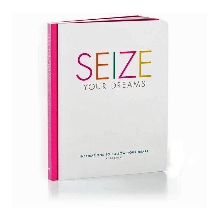 seize your dream cover